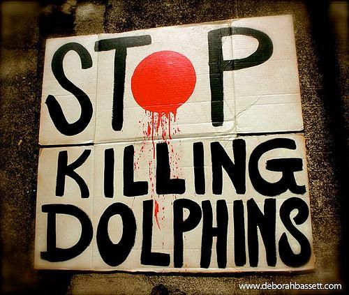 mass killing of dolphin and whales Save japan dolphins dolphin  we started our save japan dolphins  we're also leading a campaign to influence japan to stop killing whales and.