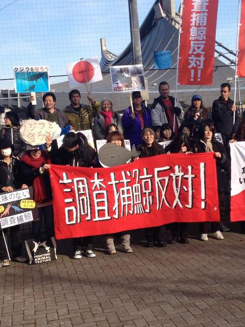 Shibuya Protest Against  Research WhalingBy MQ Todd