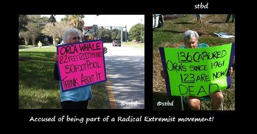 "Florida Attractions Association calls orca supporters ""Fanatics. Image by STBD"