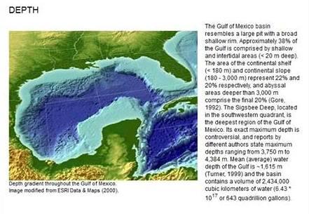 Screen print take at GulfBase.org