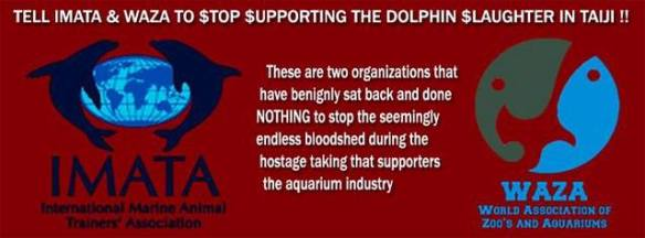 Join the ongoing event focused on exposing the captive industries sponsorship of the dolphin slaughter and capture in Taiji, Japan