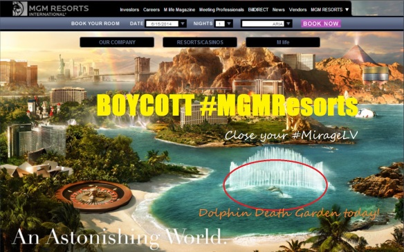 Take the pledge and sign the petition taking the pledge to Boycott the #MGMResorts until the dolphin death pool is closed! Be a voice for the dolphins July 19, 2014! Join the event here!