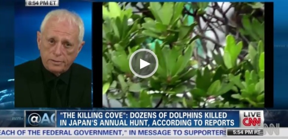 Ric O'Barry discusses the inhumane dolphin drive in Taiji, Japan and the involvement of zoos and aquariums.