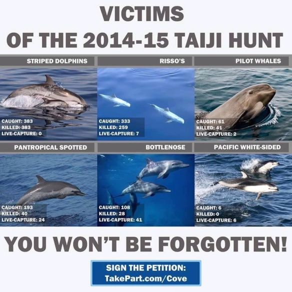 The Victims of the 2014-2015 Taiji Dolphin Hunt