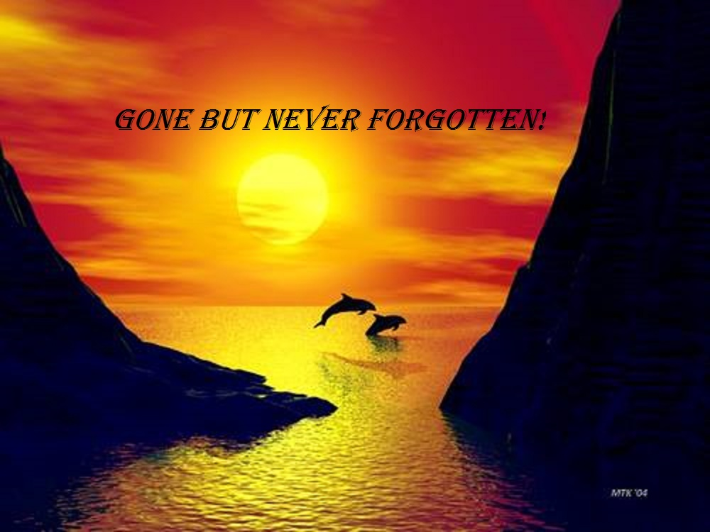 Gone but Never Forgotten! The fight to save the people of the sea continues!