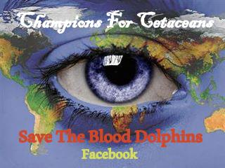 Save the Blood Dolphins and Champions for Cetaceans Always Sharing Current news for dolphins, whales, ocean life, and ocean health.